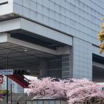 Exterior view of Edo-Tokyo Museum (江戸東京博物館)