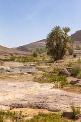2018-3994 (storvandre) Tags: morocco marocco africa trip storvandre marrakech marrakesh valley landscape nature pass mountains atlas atlante berber ouarzazate desert kasbah ksar adobe pisé
