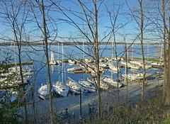 Sailing days are back (wessexman...(Mike)) Tags: infocus highquality sailboats marina