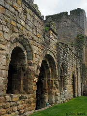 Buildwas Abbey 01 (Row 17) Tags: england shropshire severnvalley ruin ruins abbey englishheritage architecture arch arches medieval historicsite historic heritagesite heritage touristattraction olympus