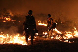 Prescribed fire on the Agua Fria National Monument