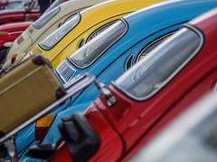 Primary Colours (katrin glaesmann) Tags: maikäfertreffen volkswagen käfer beetle classiccar oldtimer messegelände laatzen hannover hoods colours suitcase bonnet window rear back