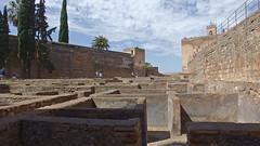 DSCF5543 Alcazaba de la Alhambra, Granada (Thomas The Baguette) Tags: granada spain granadaspain espagne espana alhambra nesrid nesridpalace patiodelosleones lionfountain comares moorish fountains architecture gardens machuca alcazaba