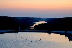The Sun King's view (HervelineG) Tags: grandcanal coucherdesoleil sunset versailles château jardin garden roisoleil sunking d7000 expllore