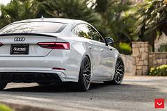Audi S5 Sportback - Vossen Hybrid Forged HF-2 Wheels - Brushed Gloss Black - © Vossen Wheels 2018 - 1122 (VossenWheels) Tags: 034 034motorsport 2018audia5sportback 2018audis5sportback sdobbinsvossen vossen abtaudis5 abts5sportback audi audia5aftermarketwheels audia5sportback audia5flowformwheels audiaftermarketwheels audis5 audis5aftermarketwheels audis5sportback audis5sportbackwheels audis5wheels audiflowformwheels hf2 hybridforged rs5sportback s5sportback sdobbins samdobbins tags5 tag tagmotorsports vossenaudi vossenaudia5sportback vossenaudirs5sportback vossenaudis5sportback vossenhf vossenhfseries vossenhf2 flowform flowformwheelsaudi