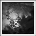 spinning star 1 thumbnail
