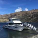 Wanaka Cruises morning trip to Stephenson's Island thumbnail