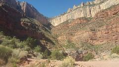 Bright Angel trail (jb10okie) Tags: grandcanyon grandcanyonnationalpark nps arizona america usa spring 2018 trip trail vacation