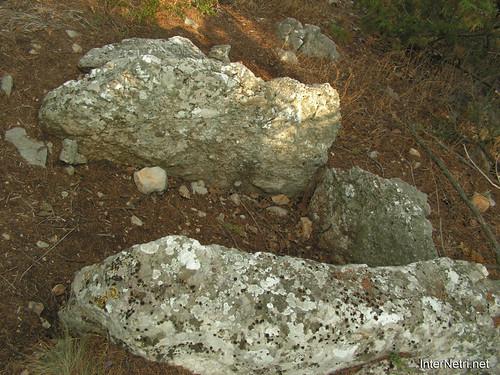 Крим, Таврські могильники на горі Кішка InterNetri Ukraine 2009 129