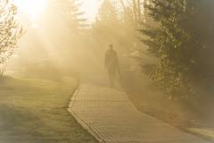 Walking in the Light (Karl's Gal) Tags: fog sunbeams walking pathway earlyspringmorning purejoy spring stalbertbotanicalpark karlsgal hff h