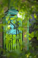 I spy a Coloquix (Waving lights in the dark) Tags: 85mm sony sonya7 coloquix graff graffiti graffitiart sheffield urbex derelict abandoned abandonedplaces tree blur bokeh fortunate green rurex spy spraycan spraypaint