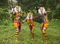 Tiger Dance Festival India (Sharpshooter Alex) Tags: tiger dance festival india indian trees grass men male painted bodies masks culture asia