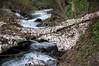En remontant l'Estours (Seix/Ariège) (PierreG_09) Tags: seix ariège pyrénées pirineos couserans montagne ruisseau torrent coursdeau rivière estours cascade arcouzan avalanche