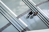 Lost girls (Gabriel_G_Photography) Tags: lignes lines floor flooring sol paris france citédelamusique graphic girls filles people gens afsdx1755mmf28gifed nikond7100 d7100 1755 1755mmf28 nikkor birdeyeview