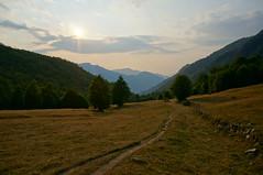Summer afternoon (Goran Joka) Tags: summer afternoon light grass grassland wood forest trees sun sky clouds nature landscape outdoor montenegro trail path