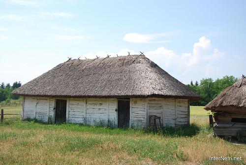 Музей в Пирогові InterNetri Ukraine 021