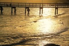 Mar Dourado (AmeliaBerti) Tags: mardourado dourado ouro gold pordosol pôrdosol sunset santacatarina sc zimbros quartasunset