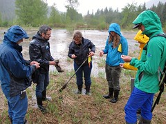 Rainy soil sample (BC Wildlife Federation's WEP) Tags: salmo senioratvclub workshop training education wetland wep bcwf gps