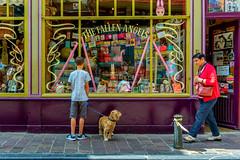 guardian angel (frika.) Tags: sony sonyalpha5000 streetphotography street angel dog shop shopping belgium travel guardian sweet life