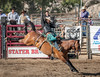 (James Flanagan Jr.) Tags: blfstg201804 rodeo cowboy bronc riding country countryside countrylife