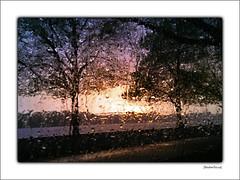 Rainy sunset (Badenfocus_Thanks for 950k views) Tags: badenfocus hannover lgstylus2 maschsee regen rain sonnenuntergang sunset atardecer himmel sky
