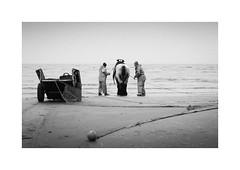 Garnaalvissers (gerritdevinck) Tags: garnaalvissers garnaalvissersoostduinkerke garnaalvissen oostduinkerke oostduinkerkebad koksijde koksijdeoostduinkerke weskust gerritdevinckfotografie gerritdevinck shrimpfishing shrimpfishers werelderfgoed northsea sea sealive beach belgium belgie beachlife beachphotography coast coastline belgiumcoast fujifilm fujifilmseries fujifilmxseries fujifilmbelgium fujifilmphotography fujifilmxpro2 xpro2