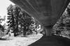 San Jose (bior) Tags: canoneoselaniie elaniie elan ilfordfp4plus125 fp4plus underpass bridge overpass highway freeway sanjose santaclaravalley