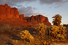 Orange Mountain and Yellow Cactus (Eric Binns Photography) Tags: outdoors landscape arizona sonorandesert desert southwest western cactus cholla mountain garyfongamberdome offcameraflash offcameralighting pocketwizard strobist goldenhour sky clouds superstitionmountain