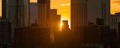 Setting Sun (dansshots) Tags: sunset sunsetcolors nycsunset nyc newyorkcity newyork financialdistrict downtownnyc downtown endoftheday dansshots nikon nikond750 70200mm picoftheday photooftheday photography