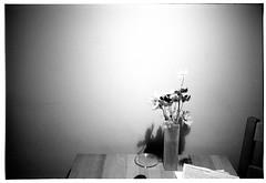 Welcome! (Christoph Schrief) Tags: brodowin brandenburg ferienwohnung welcome leicam2 zeisscbiogon2835 adoxsilvermax silvermaxentwickler 20° 129 11minuten selfdeveloped film analog sw bw