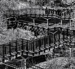 Stairway 2  # 30  ... ; (c)rebfoto (rebfoto ...) Tags: monochrome stairway steps stairs rebfoto blackandwhite citylife