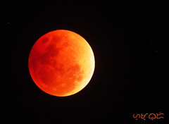 Super Blue Blood Moon (January 31, 2018) (A. K. Hombre) Tags: moon bloodmoon bluemoon supermoon night sky lunar lune orange kahel canon powershotsx530hs telephoto zoom fullmoon luna
