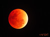 Super Blue Blood Moon (January 31, 2018) (A. K. Hombre) Tags: moon bloodmoon bluemoon supermoon night sky lunar lune orange kahel canon powershotsx530hs telephoto zoom fullmoon luna