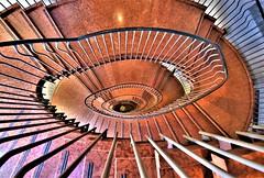 Rinascente Shopping Centre -  ROME - ITALY (Zana Suran) Tags: rinascente rome italy shoppingcentre treppe stairs eskailerak 樓梯 portaat mga hagdan escaliers კიბეები מדרגות σκάλεσ सीढ़ियाँ tangga le scale 階段 escales 계단 pêlik schody escadas scară лестница степенице stopnice escalera บันได сходи lépcsők cầu thang மாடிப்படி laiptai kāpnes trepid সোপান સીડી pelikane trappa trappe staircase spiral spirale espiral paikid kierre σπείρα कुंडली bíseach 나선スパイラル spirala spiraal спираль ספירלה