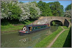 SHANNEN (Jason 87030) Tags: shannen narrowboat cut canal guc grandunioncanal man woman reflection water trees turnover bridge gayton northants northamptonshire may 2018 blossom sony ilce alpha a6000 nex lens tag flickr photo green