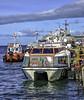 Infinity tender (Tony Tomlin) Tags: infinity cruiseship southamerica chile