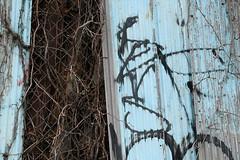 revs (Luna Park) Tags: ny nyc newyork graffiti revs lunapark bronx tag handstyle