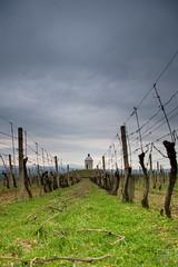 087_Moravian_Tuscany (Overtherainbow changes to KV Photography) Tags: katerinavodrazkova kvphotography landscape moravsketoskansko morava krajina moraviantuscany jiznimorava southmoravia moraviantoscana šardice