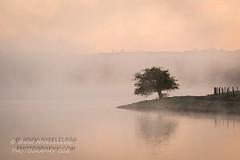 A misty Corbet Lough outside Banbridge (nigelcleggphoto) Tags: landscape northernireland ireland
