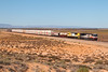 SCT009 LDP005 7MP9 Yorkeys Crossing 08 04 2018 (EMD4301) Tags: sct009 ldp005 7mp9 gt46cace emd sctlogistics progressrail yorkeyscrossing transaustralianrailway tar