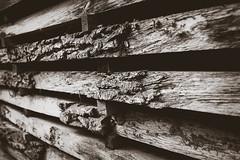 A bit rough around the edges (HeiJoWa) Tags: fz1000 lumix panasonic holz wood sawmill nature saarland 7dwf black white sw bw monochrome rau roh contrast natur carpenter schreiner baum tree work