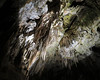 Le Grotte di Postumia (Giorsch) Tags: slovenia slowenien postumia grotte adelsbergergrotten postojnskajama karst carsico caverne gallerie stalagmiti stalattiti stalagmiten stalagtiten höhlenvonpostojna postojna