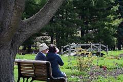 DSC_5177a (Fransois) Tags: couple amis friends partager share together ensemble jardin garden botanique botanical montréal québec complicité complicity jardinbotanique botanicalgarden tree