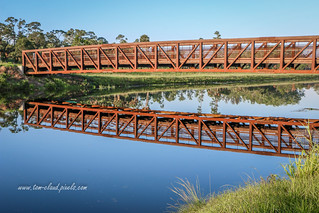 Footbridge Reflection