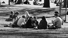 Spring Evening in the Meadows 01 (byronv2) Tags: meadows spring sunny sunshine sunlight peoplewatching candid street sitting seated picnic sunbathing edinburgh edimbourg scotland blackandwhite blackwhite bw monochrome