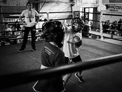 25048 - Jab (Diego Rosato) Tags: boxe boxing pugilato criterium giovanile lazio nikon d700 2470mm tamron rawtherapee ring match incontro bianconero blackwhite pugno punch piccoli pugili little boxer