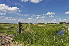 Frysian landscape near Wijckel ... (8806) (Le Photiste) Tags: clay frysianlandscape wijckelfryslân frysianlandscapenearwijckel fryslânthenetherlands thenetherlands nederland landscape nature naturesprime rainbowofnaturelevel1red planetearthnature planetearth ngc clouds ditch agriculture fence afeastformyeyes aphotographersview autofocus artisticimpressions blinkagain beautifulcapture bestpeople'schoice creativeimpuls cazadoresdeimágenes canonflickraward clapclap peacetookovermyheart digifotopro damncoolphotographers digitalcreations django'smaster friendsforever finegold fairplay greatphotographers groupecharlie hairygitselite ineffable infinitexposure iqimagequality interesting inmyeyes lovelyshot lovelyflickr livingwithmultiplesclerosisms myfriendspictures mastersofcreativephotography magicmomentsinyourlife niceasitgets photographers prophoto photographicworld photomix soe simplysuperb saariysqualitypictures showcaseimages simplythebest simplybecause thebestshot thepitstopshop theredgroup thelooklevel1red vividstriking wow worldofdetails yourbestoftoday sky meadow grass green bluesky