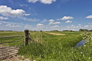Frysian landscape near Wijckel ... (8806)
