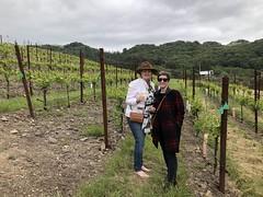 Lauren & Sarah in a gruner veltliner field (sarahstierch) Tags: beldenbarns santarosa wineries winery winetasting farms california sonomacounty winecountry women portrait gruner veltliner vineyard