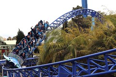Manta @ Sea World (Prayitno / Thank you for (12 millions +) view) Tags: konomark sw sea world sd san diego ca california jet roller coaster high speed thriller ride smooth manta outdoor theme park day time cloudy fun activity tourist attraction spot blue track